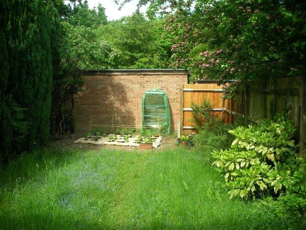 Mijn tuin (My garden) circa 2008