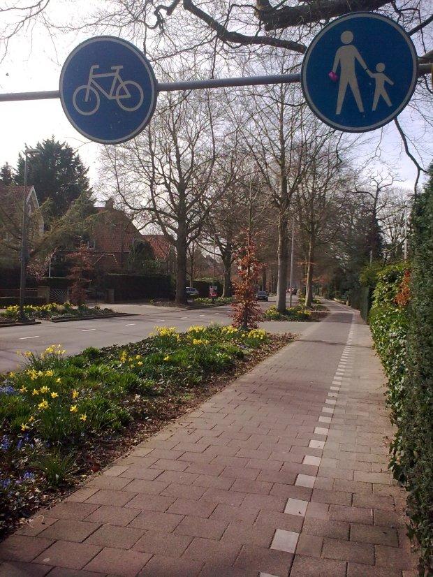Cycle lane vs pedestrians