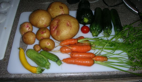 Veggies from garden