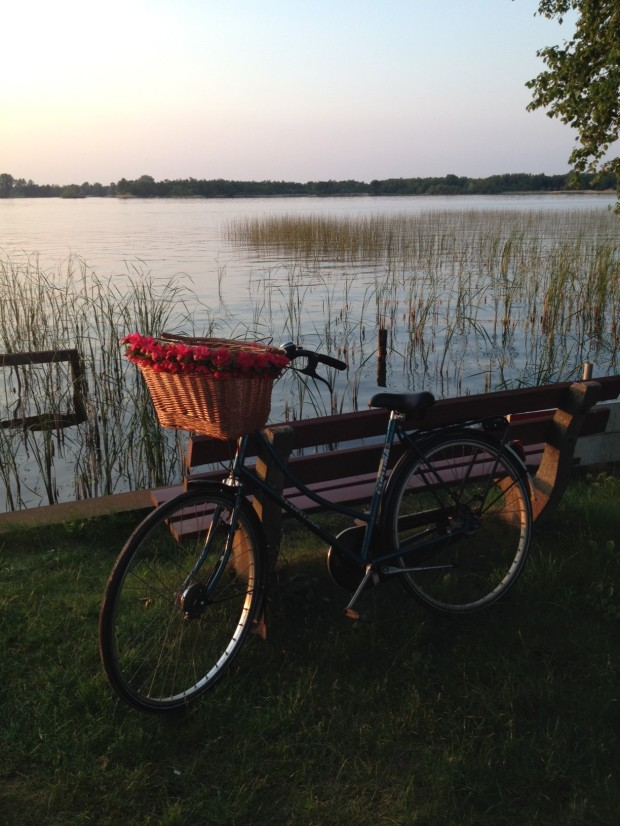 Bike ride to Loosdrecht