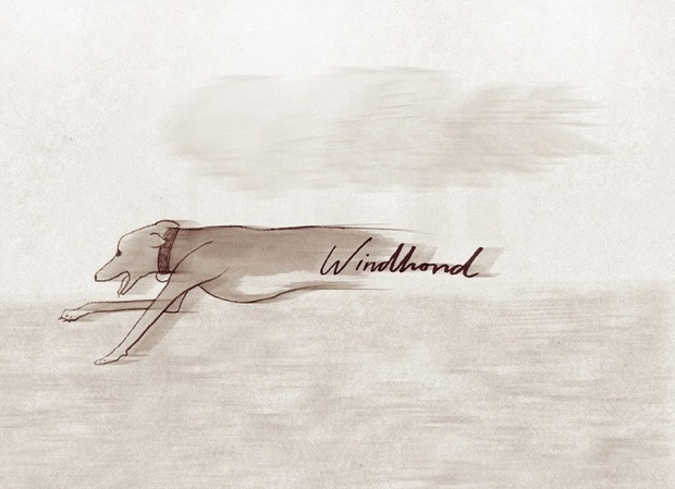 Windhond, courtesy of Laura Frame Illustration