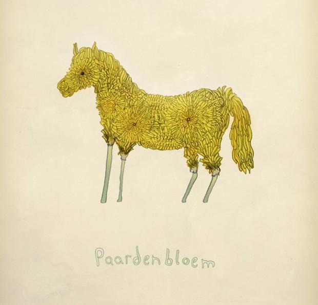 Paardenbloem (dandelion)