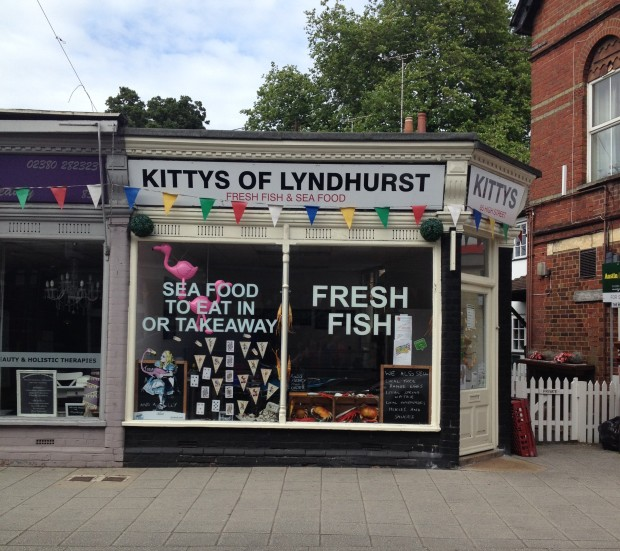 Kittys of Lyndhurst