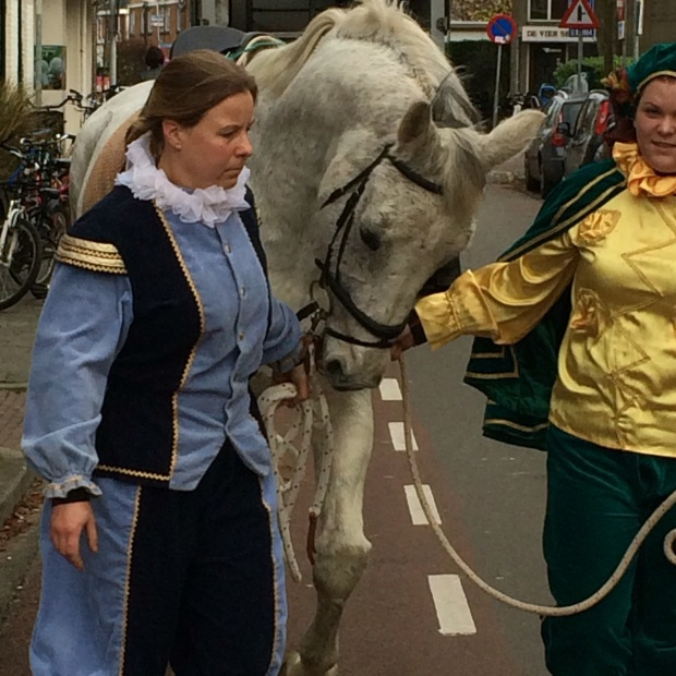 Sinterklaas' horse, Schimmel