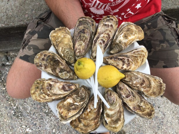 Oysters at Cancale, France