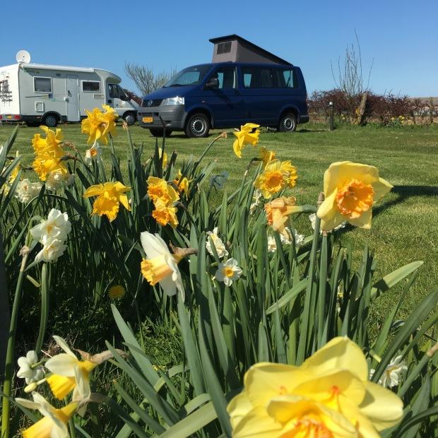 Camping in Noordwijk