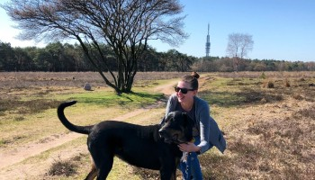 Volunteering at LASSie animal shelter and sanctuary in